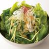 お好み焼肉 道とん堀 - 料理写真:江戸菜サラダ