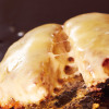 お好み焼肉 道とん堀 - 料理写真:鉄板焼きチーズハンバーグ