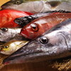 イカセンター新宿総本店 - 料理写真:取れるお魚は毎日変わります。毎日が真剣勝負!!