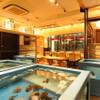 渋谷イカセンター - 内観写真:入り口のイケスにはイカのほかにも色々泳いでいます。