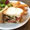 テイストアンドセンス - 料理写真:グリルチキンのサンドイッチ