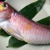 魚棚ふみ文 - メイン写真: