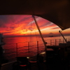 Marine&Farm SAJIMA - メイン写真:
