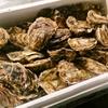 魚貝 ののぶ - メイン写真: