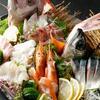 産地直送 お魚とお野菜 海畑 - 料理写真:大分県豊後水道より朝獲れ鮮魚を空輸でその日の夕方にはご提供!