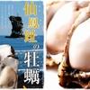 元祖北海道炭焼きイタリアン 炭リッチ - メイン写真: