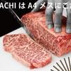 USHIHACHI - メイン写真: