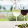 KAN-ICHI - ドリンク写真:白・赤ワイン