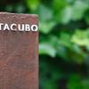 TACUBO - メイン写真:
