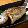 魚バカ一代 - メイン写真: