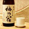 魚盛 - ドリンク写真:梅乃宿