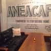 アネアカフェ - メイン写真: