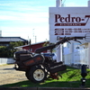 Pedro-78 - メイン写真: