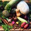 STAND BY FARM - 料理写真:旬の朝どれ野菜を焼かせてください。