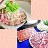 カド - 料理写真:塩ちゃんこ鍋、鴨鍋