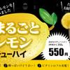 鉄板居酒屋 ソメイヨシノ - メイン写真: