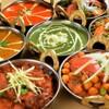インド・ネパールレストラン ヒマラヤ - メイン写真: