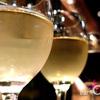 bar Caiotto - メイン写真: