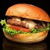 バーガーショップホットボックス - 料理写真: