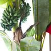 ベトナムちゃん - 内観写真:ベトナムから運んだバナナの木。