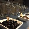 okinogami blue cacao's - メイン写真: