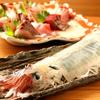 活魚卸直営の店 ニュー魚バカ三太郎 - メイン写真: