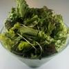 韓々 - 料理写真:韓々サラダ