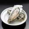 キタバル - 料理写真:【2月の殻付きがき100円フェア】かきの白ワイン蒸し 一個100円