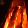 黒門町焼き鳥 たがみ - メイン写真: