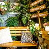 肉×ラクレットチーズ ツリーハウスダイナー - メイン写真: