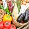 Vegetable Dining 畑舎 - メイン写真:
