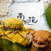南風花 - メイン写真: