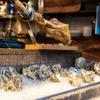 Oyster Bar MABUI - メイン写真: