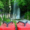 桂茶屋 - その他写真:涼しくて迫力ある滝を間近で見られる観光スポット