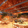 プリムローズガーデン ガーデンカフェ - メイン写真: