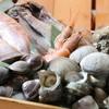 今池海鮮市場BEER&BBQ - メイン写真: