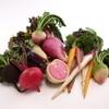 秋本 - 料理写真:採れたて!鎌倉野菜