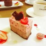松山のカフェでゆったりケーキを!おすすめの人気店8選