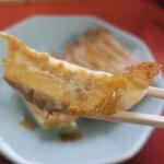 宇都宮グルメといえば!餃子の美味しい人気店8選