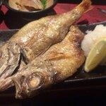 金沢で海鮮をたっぷり満喫!おすすめの居酒屋6選