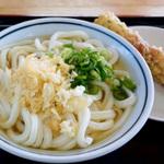 讃岐うどんの旨い店 (東讃地域・高松市)