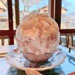 暑い京都でかき氷!定番から創作かき氷までオススメ20選