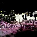 2015年バレンタインは函館スイーツ&花火&イルミネーション!いつもと違う記念日を(^o^)