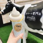 渋谷で食べ歩き!SNS映えも狙えるおすすめグルメ18選