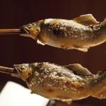 東海地方で「天然鮎」を食べたくなったら?