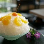神奈川で美味しいかき氷を堪能!行列必至の専門店など20選