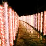 《京都》先鋭×伝統。至高の新星レストラン11/10追記(2014末〜2015)