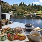 京都水族館周辺の絶品レストラン13選!和食や洋食の人気店
