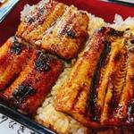 高知県でうなぎのおいしいお店5選!天然うなぎも紹介
