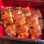 宮崎でうなぎが美味しいお店20選!宮崎市や西都市など